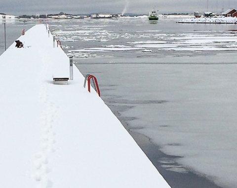 SLIK VAR DET: Ganske mye is ved bølgebryteren fredag.