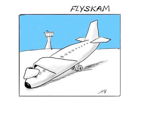 Flyskam og bilskam: Skal vi begynne å skamme oss over å bruke bil og fly? Nei, men ansvarlige skal vi være.