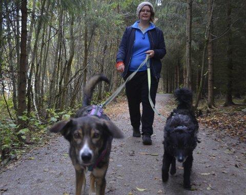 Har trua: Julie Fuglerud Danbolt tror det er marked for hundelufting. Her ser vi henne med Derria og BajnokFoto: Jeanette Sandbæk Håland