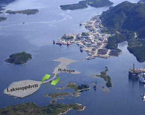 VISJONEN: Slik tenker INC-konsernet seg bruk av nye baseområde. Her kjem også base for seismikkselskapet PGS rett aust for hydrogen-arealet.