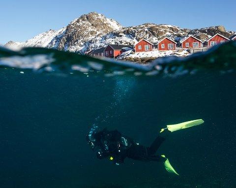 Lofoten diving utvider tilbudet sitt, med instruktørkurs og fridykking i fine omgivelser på Ballstad.