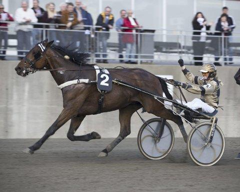 Elisabeth Storetvedt trives i begge konkurranseformer. (Foto: Hesteguiden.com)