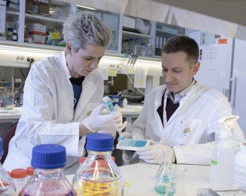 Seniorforskerne Linn Hodneland og Magnus Blø er to av 20 medarbeidere tilknyttet Bergenbio, som nå ligger i front på testing av ny koronamedisin.