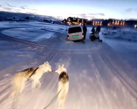 To utlendinger skulle til Hafjell, og fulgte GPS-ens anvisninger om å kjøre via Nordseter til Pellestova. At vegen er vinterstengt og med skispor stoppet dem ikke før de var like ved Pellestova.