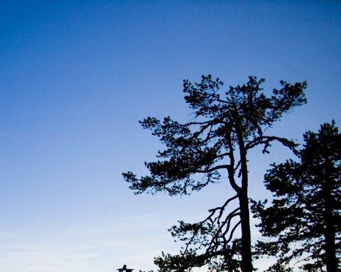 Hytteliv er nordmenns påskeaktivitet nummer én. To av tre som skal på påskeferie i år skal på hyttetur. Foto: Sara Johannessen / NTB scanpix
