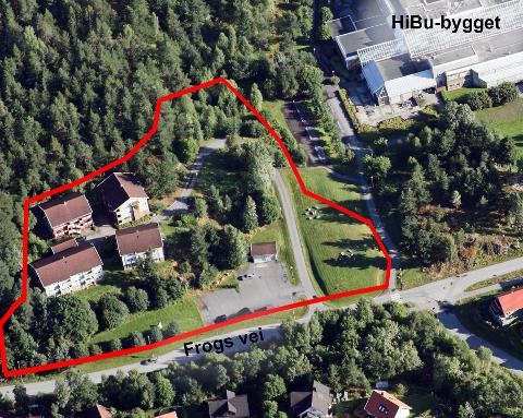 Aktuelt område: Det statlige barnevernet skal etablere et ungdomshjem, og vurderer ulike tomtealternativer på Raumyr.