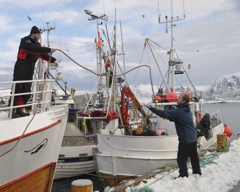 FORTØYD: Tor Petter Kristiansen er en av de yngre fiskerne på Eggum. Han ror med «Eggumsværing» som eies av faren, Morten. Her kaster han tampen til ordføreren som tar imot. Alle foto: Kai Nikolaisen
