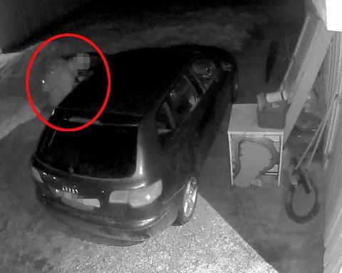 - GUFFENT: Her er mannen på vei inn i bilen som står på gårdsplassen rett utenfor husveggen til Svein. FOTO: PRIVAT