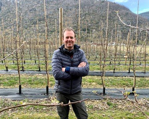 FRUKTBONDE: Fredrik Hestetun har 3000 epletre og store planar om å gje sidermiljøet i Hardanger tøff konkurranse.