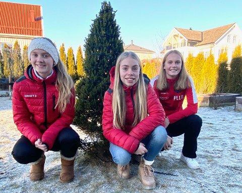 I ÅR OGSÅ: NILs 13 år gamle fotballjenter, her representert ved f.v. Marie Foss Andresen, Mie Morseth Pettersen og Pernille Linnea Løvhaugen-Bjerke, henter juletrær på Rotnes i år også.