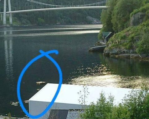 Dette bildet la Bjørnar Kjosaas på gruppa Dale i Sunnfjord, medan han spurte kven som hadde ankra opp denne badetingen.