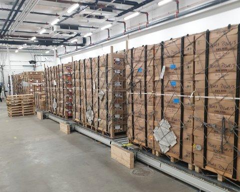 VARER FOR MILLIONER: Importblomster fra tre kontinenter står nå på vent.
