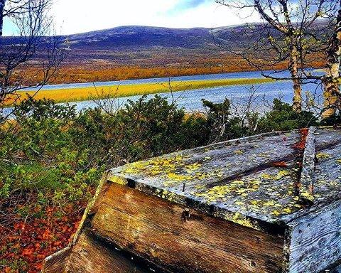 HØSTFARGER: Naustodden på Dovrefjell. Foto: Laila M.Skogeng