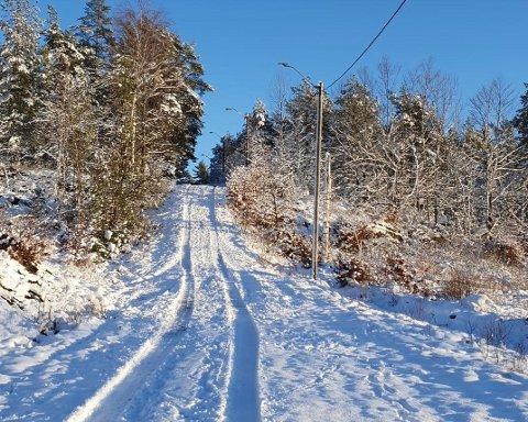 BILSPOR: Skal skal ha vært dype bilspor i nesten hele lysløypa på Vear, i tillegg til ødeleggelser nederst i akebakken ved Bruaåsen.