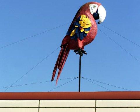 KJENT SYN: Slik har papegøyen som Egil Syversen og Terje Westfoss i sin tid laget tronet i Dikeveien siden 80-tallet. Nå er den til salgs.