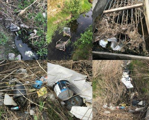 FUNN: Fredrikstad kommune fant mye søppel i dikene på Dikeveien da de var på tilsyn.