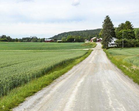 FÅR FIBER: I Torpedalen vil det bli bredbåndsutbygging etter at Halden kommune har fått tildelt midler til dette formålet.