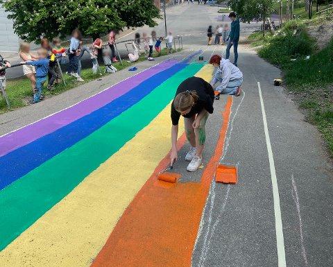 Rektor Britt Brøymo ved Bøler Skole var lei av at flaggene ble revet ned på skolen. Nå har skolen et flagg det ikke går an å rive i.