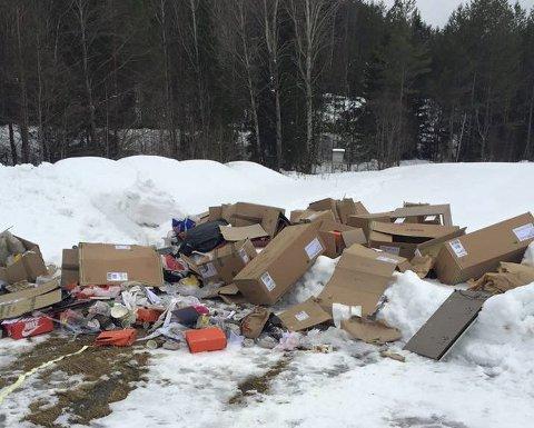 DUMPET: Søppel fra samme sted ble dumpet på Krokhol og ved Paddetjern. FOTO: BERNT ARILD HANSEN