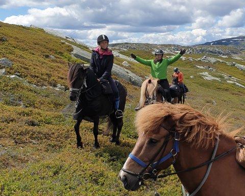FJELLTUR MED EN VRI: Har du gnagsår, eller er fjellskoene for små, kan kanskje hesteryggen være å foretrekke. På Lifjell finnes den muligheten.