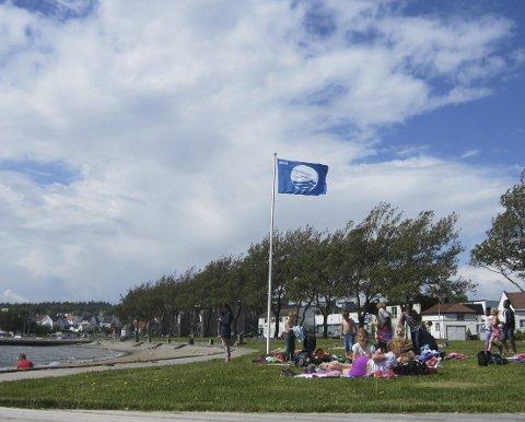 SVAIER I VINDEN: Endelig kan Sjøbadet igjen prydes av det blå flagget i toppen av flaggstangen.