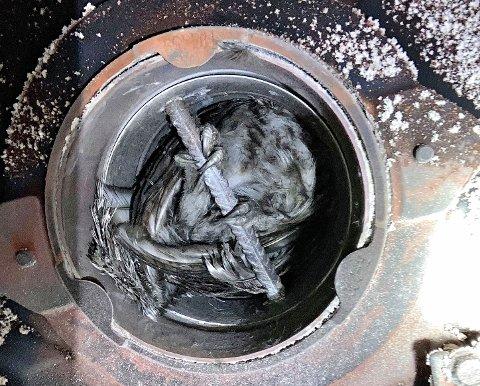 SATT FAST: Ugla satt fast i et armeringsjern inne i pipa.