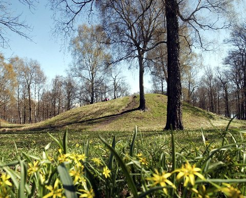 PERLE:  Man kan følge Midgard vikingsentersdigitale kart over Borreparken. Her kan man også se korte informasjonsvideoer om kulturminnene.