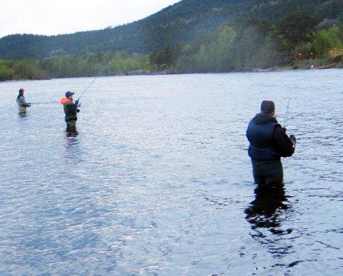 POPULÆR ELV: Altaelva er populær. Dette illustrasjonbildet er av ivrige fiskere det første laksedøgnet i Altaelva i 2010, og de har ingenting med dagens sak å gjøre.
