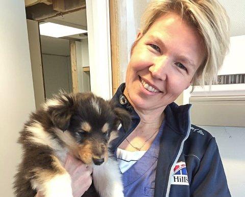 FLYTTER OVER KANALEN: Ingeling Bull legger ned Tjøme Dyreklinikk og starter Norges første spesialklinikk for dyretenner i Tønsberg.