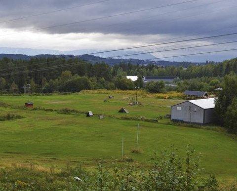 Tidligere avfallsplass: I dag kan dette området bare ses som grønnkledde sletter.