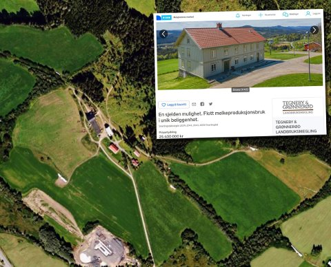 IDYLLISK GÅRD: Ruud gård har vært eid av samme slekt siden 1882. Nå er den store landbrukseiendommen til salgs.