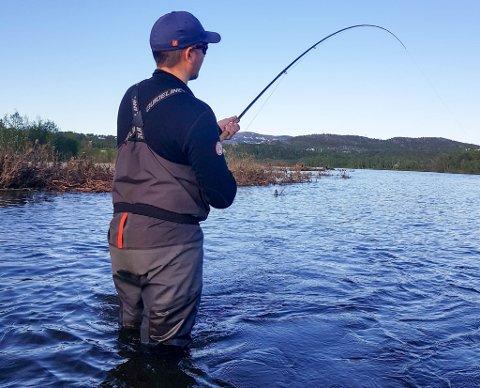 LAKSEFISKE: Jostein Jæger fra Hammerfest har fått laks i både Altaelva og Repparfjordelva i år. I Altaelva er det tatt svært mange smålaks den siste tiden.