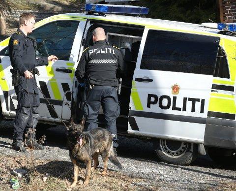 HUND: Politiet brukte hund under ransakingen på en adresse i Framnes-området.