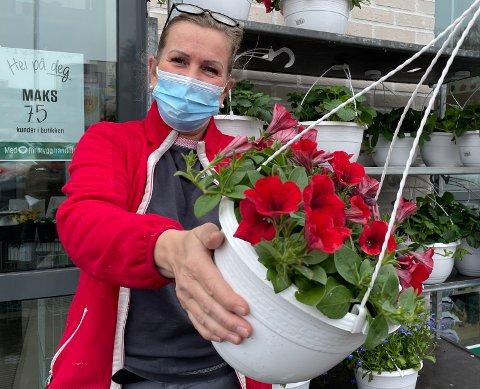 VÅRBLOMSTER: – Sommerblomster går omtrent like raskt ut som de kommer inn på lager, sier assisterende butikksjef Bente Hylle i Europris i Kongsvinger, her med en frodig, rød lobelia i hengeampel.