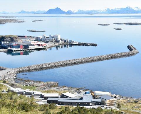 Både Lovundlaks og Nova Sea fra Lovund har meldt seg på auksjonen. Det samme har Tomma Laks og Kvarøy Fiskeoppdrett. Bildet er fra Lovund.