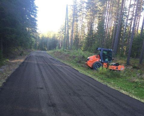 Ny asfalt: på Østsideveien, Nes i Ådal. Foto: Olaug Hømanberg