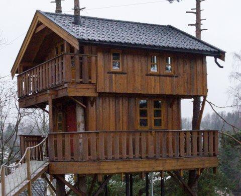 TRETOPPHYTTE: Det er denne hytta som skaper besvær for eier. Nå kan den bli godkjent om eier sender en dispensasjonssøknad.