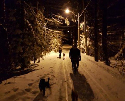 TRÅKKER NED SKISPORET: – Jeg spurte dem hvorfor de tråkket i skisporet. De svarte at de ikke hadde noe annet sted å gå, sier skiløper Øystein Løvli fra Eik.