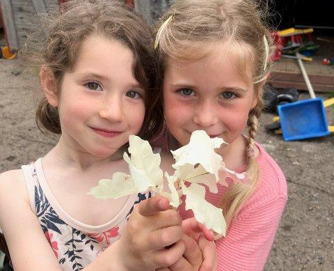 Rare greier: Zoë og Maren og de andre barna i Sandøya barnehage kom over et veldig spesielt fenomen.