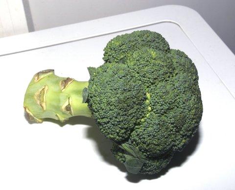Brokkoli.  Broccoli. Sunn. Sunnhet. Kosthold. Helse. Genmanipulasjon. Sprøytemidler. Sprøyting av grønnsaker. FOTO: SCANPIX
