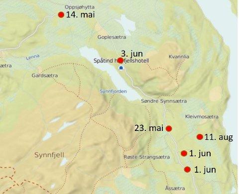 Kartet viser hvor folk har meldt inn mulige observasjoner av savnede i Synnfjell-området.