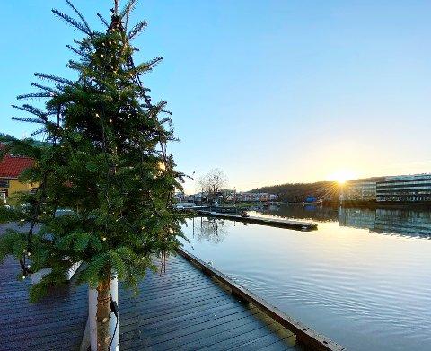 SOL OG SKYFRITT: Etter en rekordvåt desember var mandagens solskinn i Tønsberg et godt avbrekk.