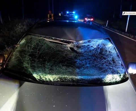 KRAFTIG SMELL: Slik så bilen ut etter møtet med elgen. Foto: Ole Johnny Delerud