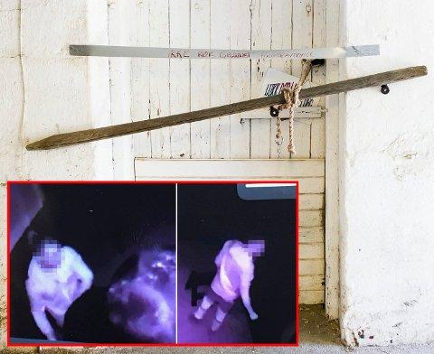 SJOKKERENDE BILDER: En mann på Romerike ble siktet etter en nattlig visist i en lokal stall. Videobildene fra Sverige sjokkerer i hestemiljøet. FOTO: LISBETH LUND ANDRESEN / PRIVAT/FACEBOOK