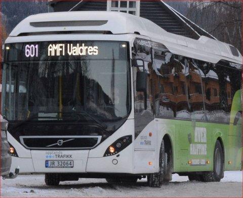 Ikkje pengar: Innlandet fylkesting vil ikkje bruke pengar på å gje bussane ny profil.