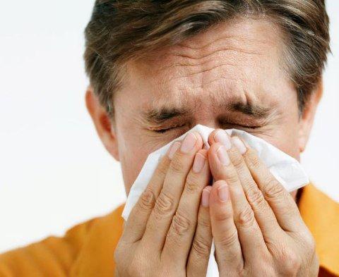 Mange sliter når pollenspredningen tar av.
