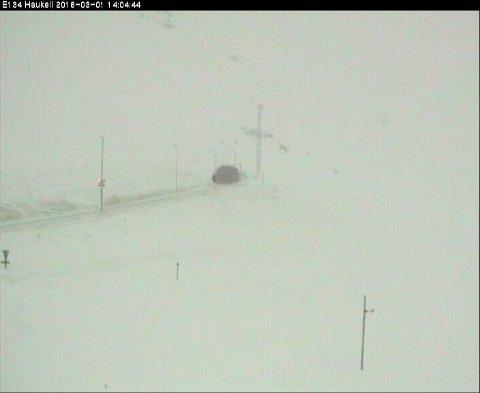 Haukelifjell klokken 14.00 Webkamera fra Staten vegvesen
