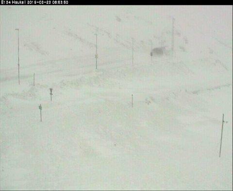 Slik ser det ut på Haukeli lørdag morgen.