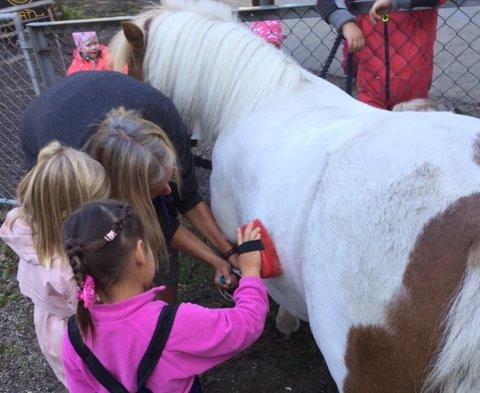 PUSSE: Å pusse og stelle hest er noe av det barna får lære i 100-meterskogen barnehage. – Det gir ungene stor følelse av mestring, sier styrer Ingvild Hansen.