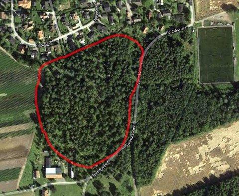 KULTURLANDSKAP: Det aktuelle området er her ringet inn med rødt og er i dag et kulturlandskap som er beite for husdyr. Det består for det meste av stein, gress og skog.